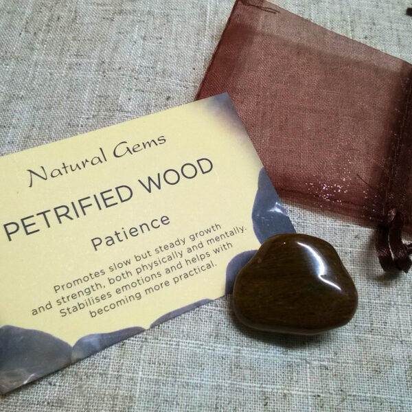 Petrified Wood Crystal