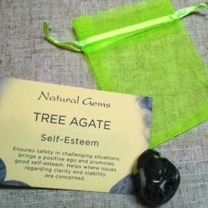 Tree Agate Crystal