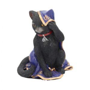 Magic Black Cat